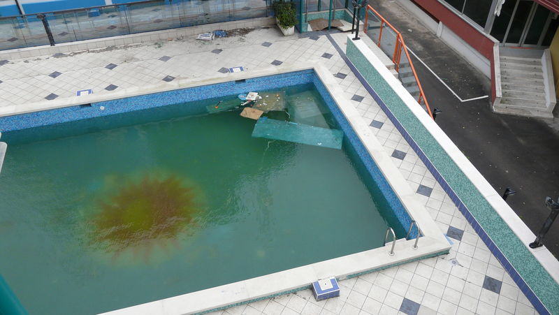 A chaque anomalie sa cause et sa solution for Algues brunes piscine